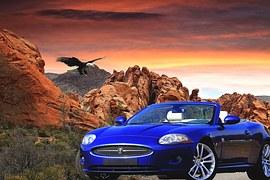 renovación de certificados de conducir económicos